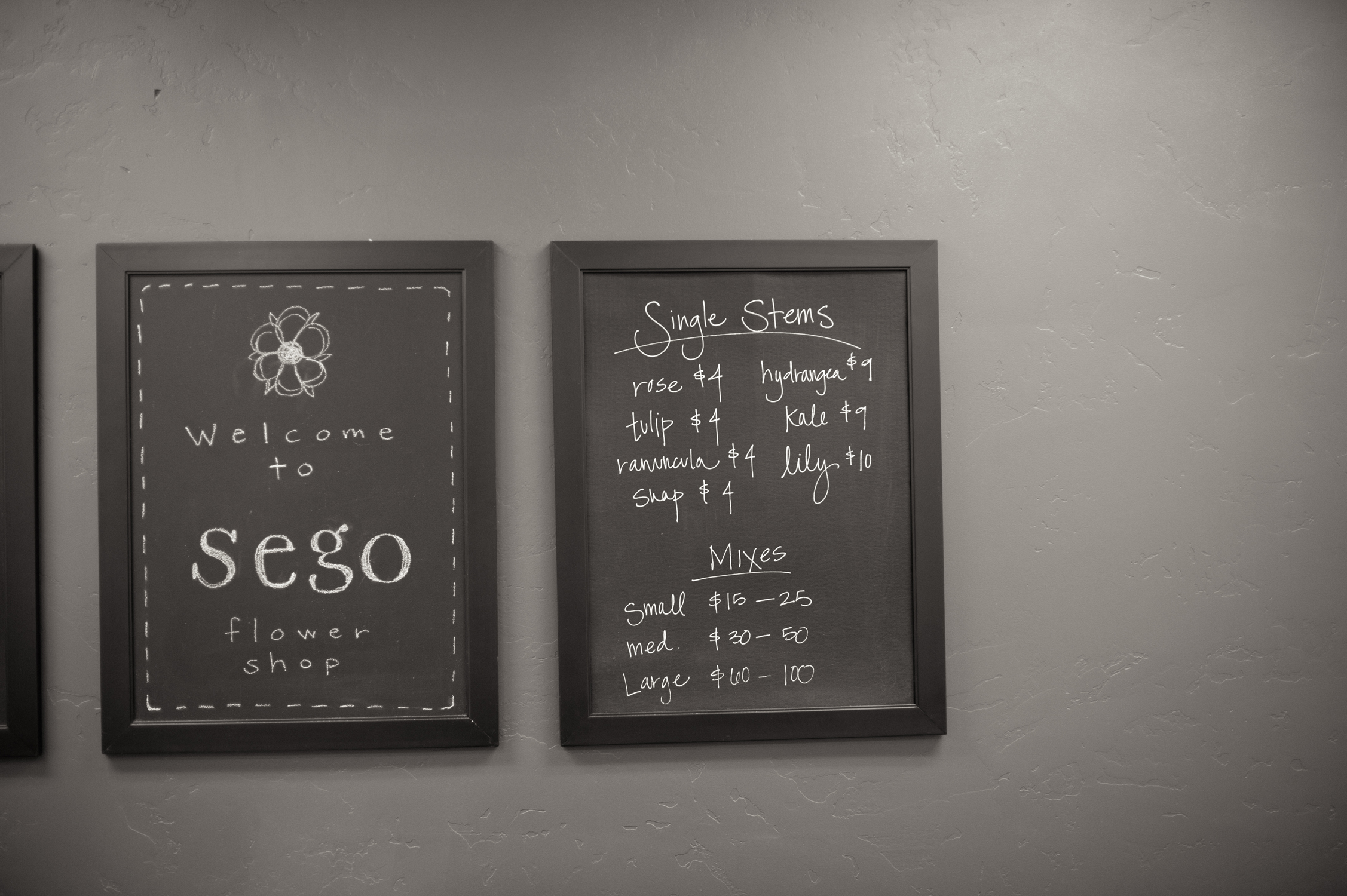Sego Event Planning-The best